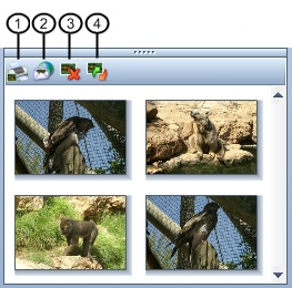 Using the selected images pane